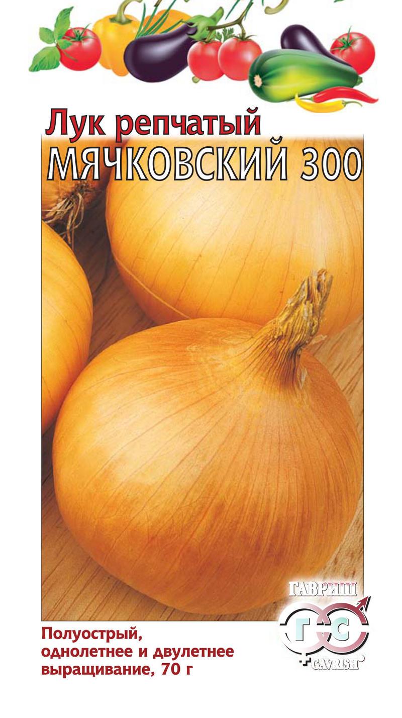 luk-repchatyy-myachkovskiy-gavrish