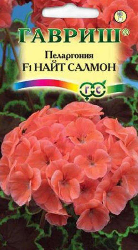 pelargoniya-nayt-salmon-gavrish