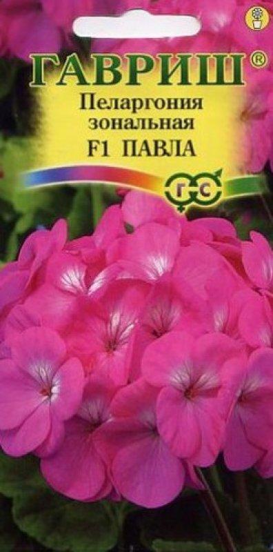 pelargoniya-pavla-gavrish