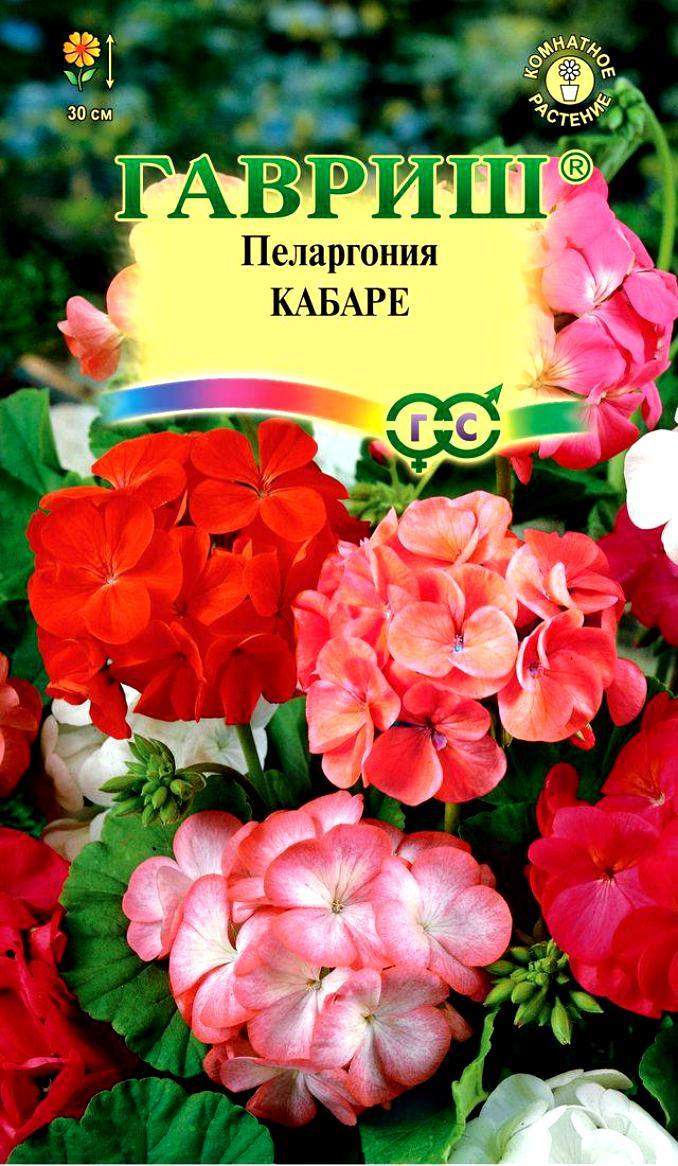 pelargoniya-zonalnaya-kabare-f1-gavrish