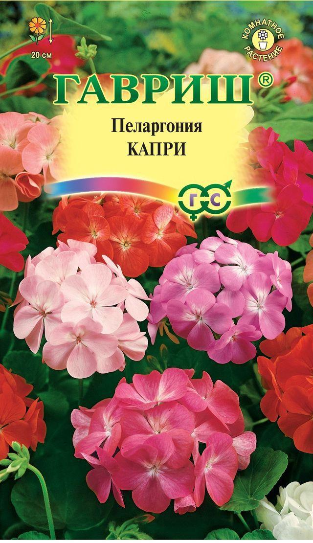 pelargoniya-zonalnaya-kapri-f1-gavrish