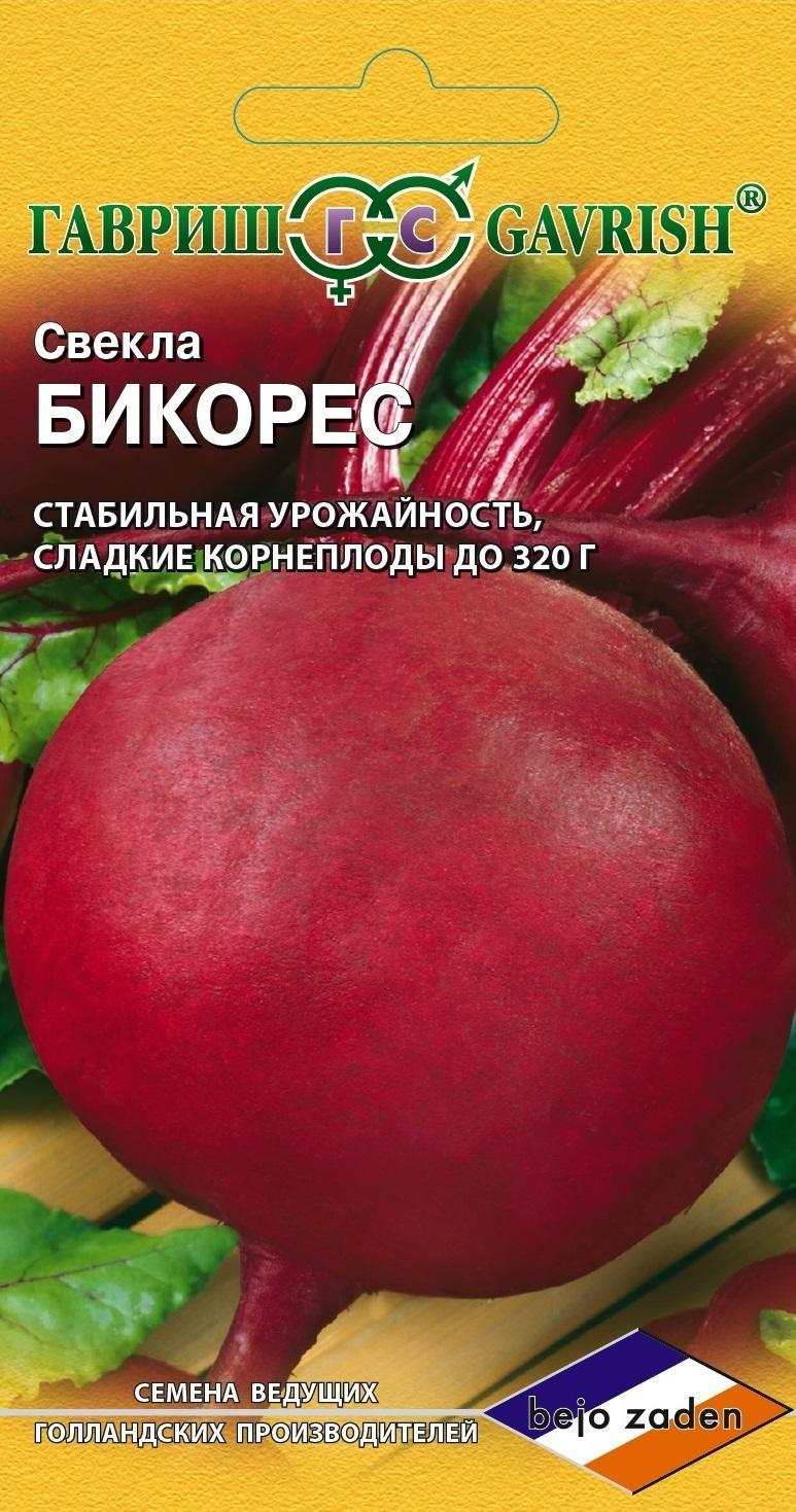 svekla-bikores-10-g-gollandiya