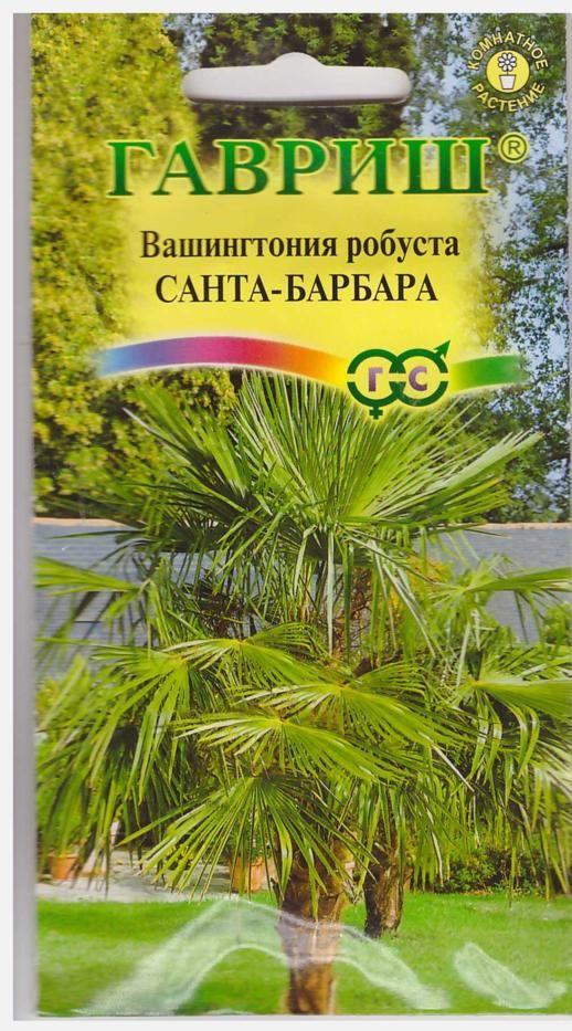vashingtoniya-santa-barbara-3shtgavrish