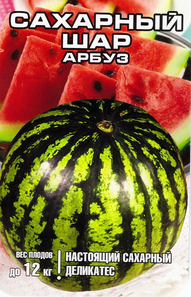 arbuz-sakharnyy-shar-sib-sad