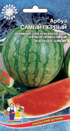 arbuz-samyy-pervyy-uralskiy-dachnik