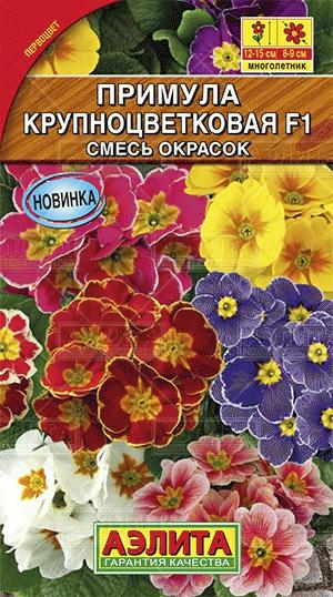 primula-krupnocvetkovaya-smes-ayelit