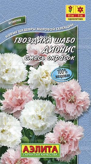 gvozdika-shabo-dionis-smes-01g-ayelita
