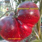 prekrasnyy-pyshnyy-3