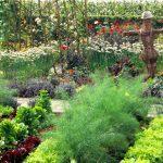 decorative-vegetable-garden-design_1633659