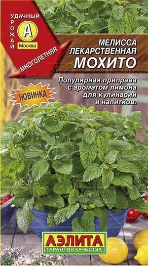 melissa-mokhito-01g-ayelita