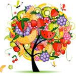 FruitTreeDrawing