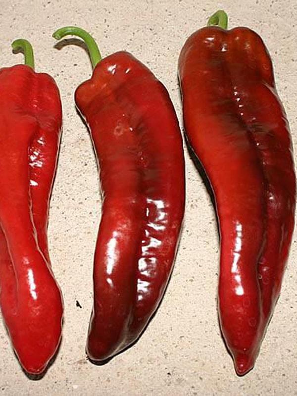 Перец сладкий Итальянский (Dulce Italiano)