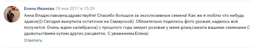 Е. Иванова