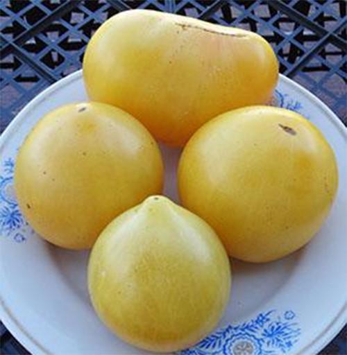 Гном Лимонный лед