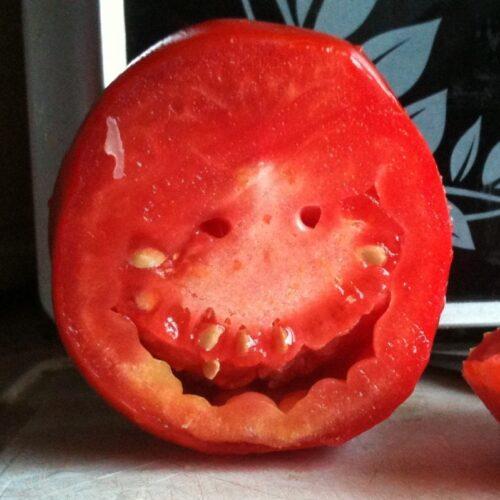 Сrazy -томаты («сумасшедшие томаты»)