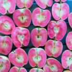 190410-aliza-sokolow-food-grams-farmers-markets-rose-apples-10-700x784