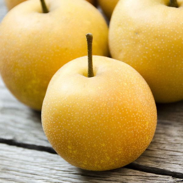 923ce258d303d36e08c16366a847469a--organic-fruit-fruit-delivery
