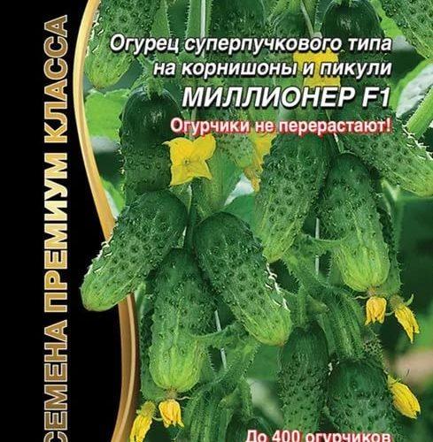 ogurec-millioner-f1-r-ud-do-400-ogurchikov-do-10