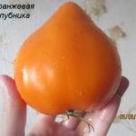 оранжевая-клубника3