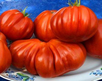 Tomat-Serdce-Albengi-gl