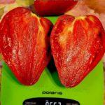 krasnoe-maslyanoe-serdce-1000-tomatov-650x650