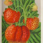 Madame Moutot - Schaal, Gustav, Äpfel, Birnen, Stein-Beeren- und Schalenobst