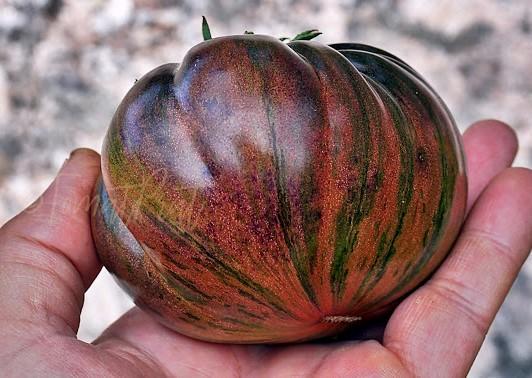 the.thong.ripe.08.08.17-6