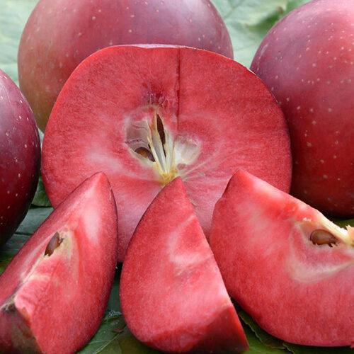 Красномясые яблони