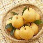 cheap-fresh-pear-in-china